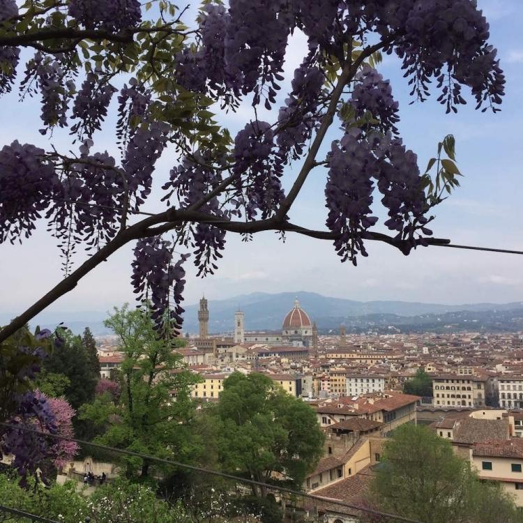 The Bardini garden offers stunning views onto Florence.