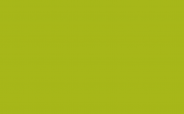 Convallis Tempus Phasellus